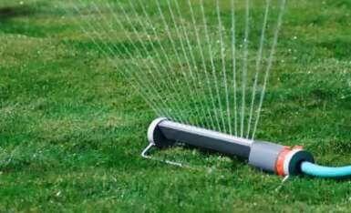 Como sembrar cesped instrucciones consejos el horticultor - Plantar cesped natural ...