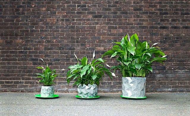 , Growth, la maceta que crece junto a tus plantas
