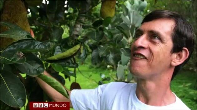 , Coleccionista de frutas ha plantado más de 1300 especies raras y exóticas