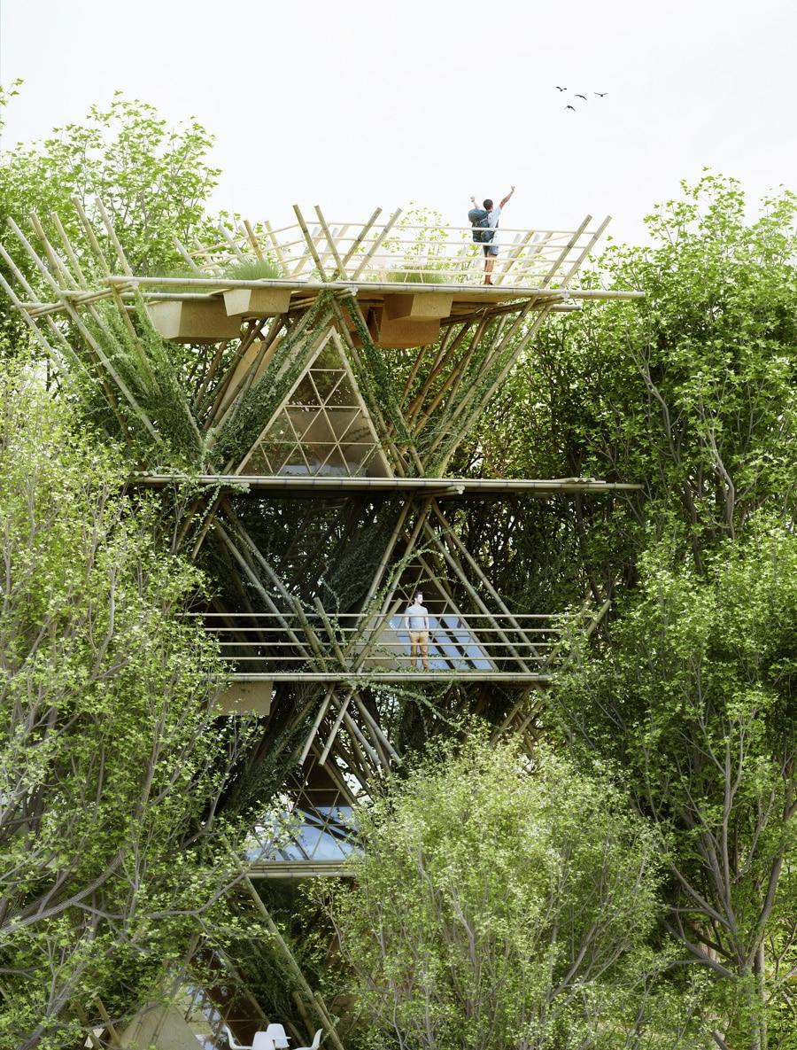 , Hotel ecológico usa bambú en toda su estructura