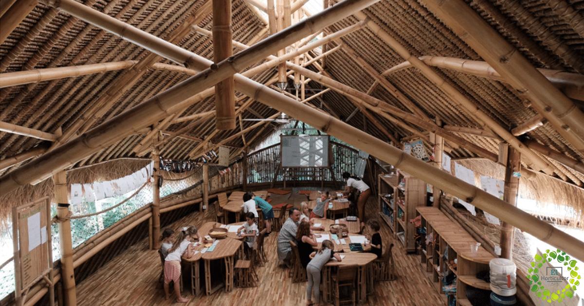 , Conoce la escuela en medio del bosque, hecha de bambú que enseña Permacultura