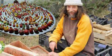 , Poot Pascal, Cultiva 400 variedades de tomates orgánicos sin usar agua