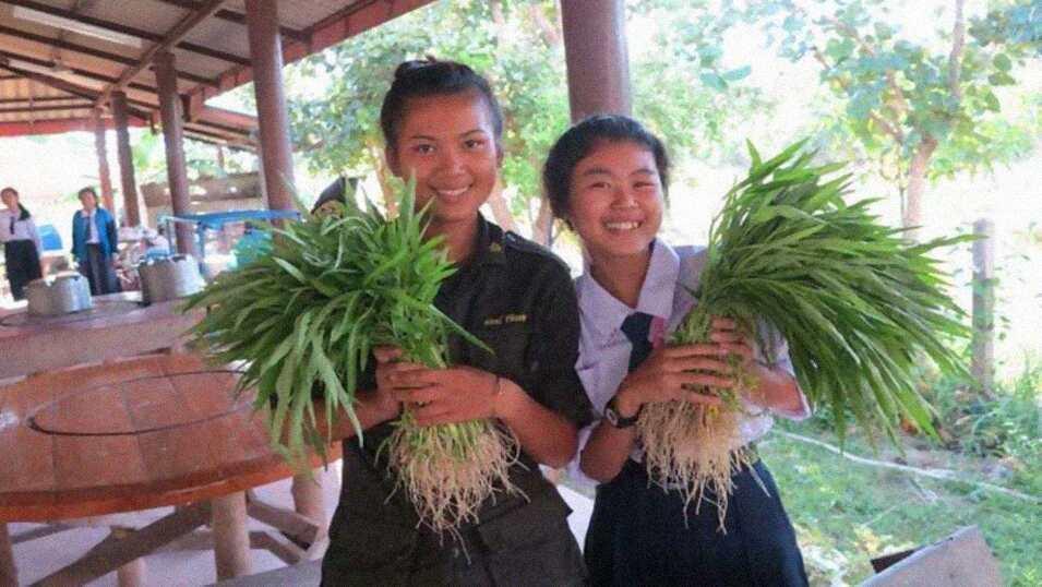 Escuela Solar autosuficiente en Tailandia3