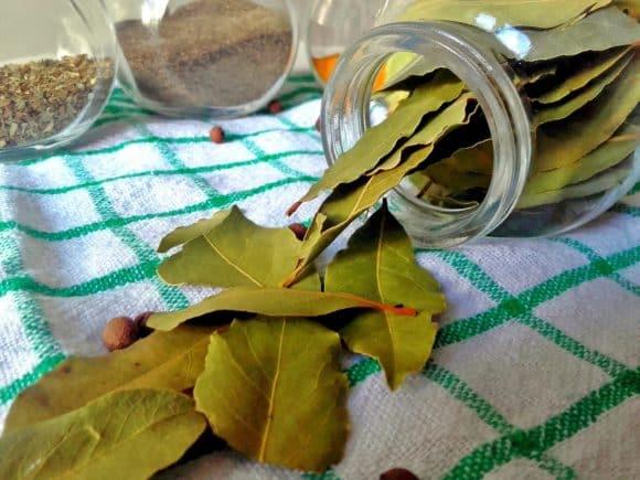 Remedios naturales para las llagas o Aftas, Remedios naturales para las llagas o aftas