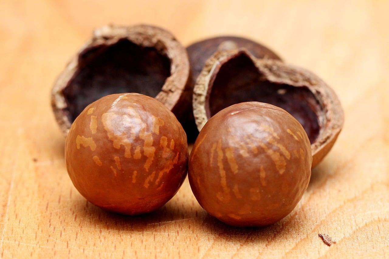 , 7 Increíbles Beneficios de la Nuez de Macadamia