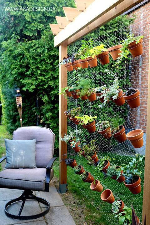Cómo hacer un huerto ecológico vertical paso a paso