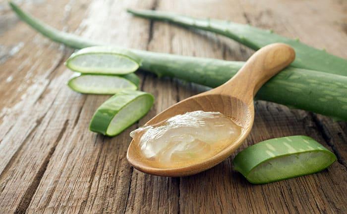 usos del aloe vera, Usos del aloe vera, beneficios y como prepararla en casa