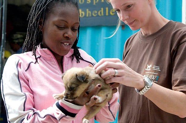 La compasión por los animales puede mejorar tu salud