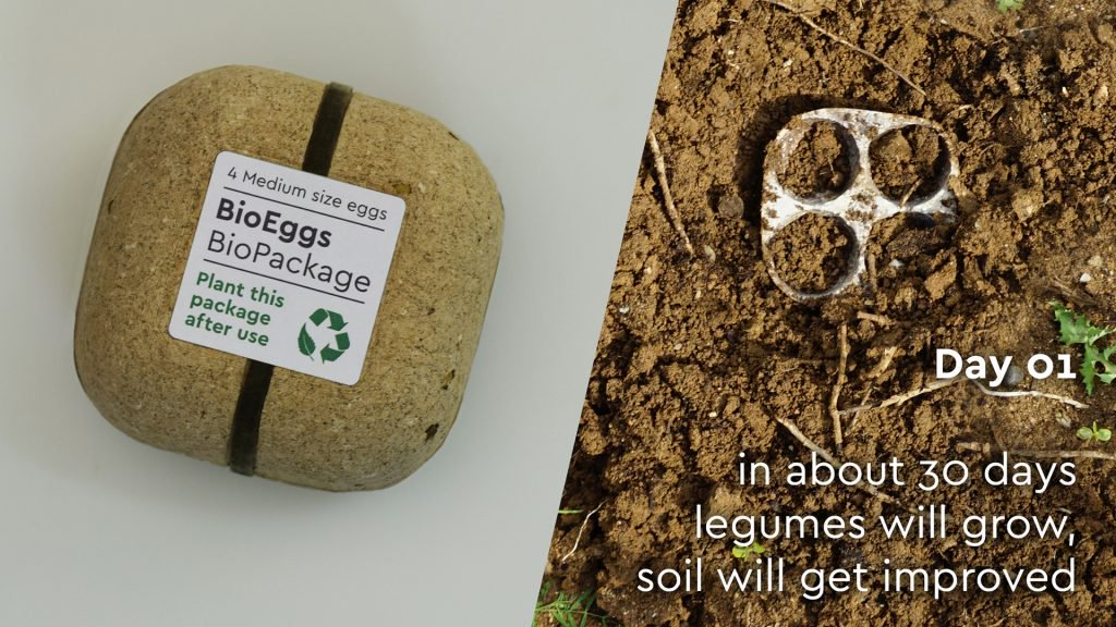 La caja de huevos que puede ser plantada después de su uso