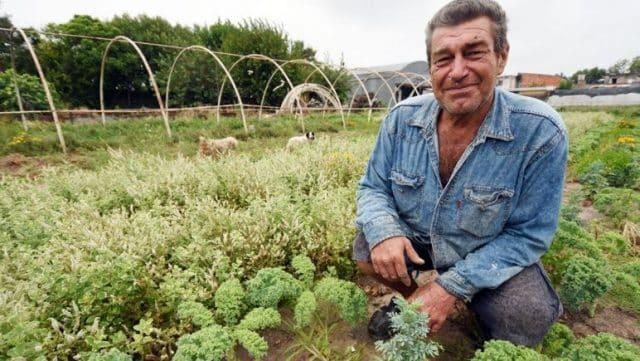 , El agricultor que se intoxicó y hoy cultiva alimentos libres de agrotóxicos