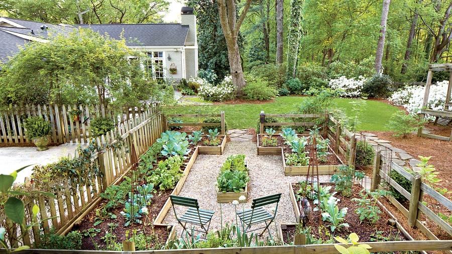 huerta, Cómo transformar tu jardín en una huerta orgánica