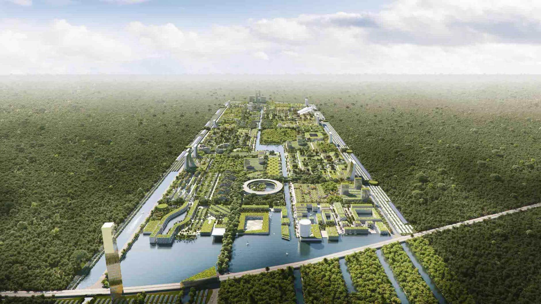 Así será la primera Ciudad Bosque con 7,5 millones de plantas en Cancún