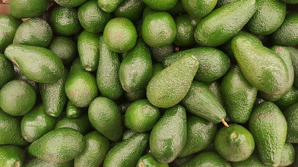 Comer aguacate reduce colesterol, la glucosa y la depresión. Es la fruta perfecta