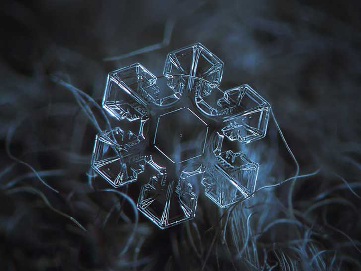Fotos macro de copos de nieve muestran diseños imposiblemente perfectos