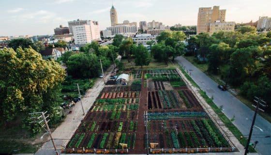 El primer centro agrícola comunitario de las Américas ofrece alimentos gratuitos a miles de personas