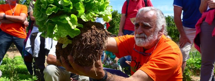 , «O volvemos al estiércol en nuestra agricultura o no habrá futuro»