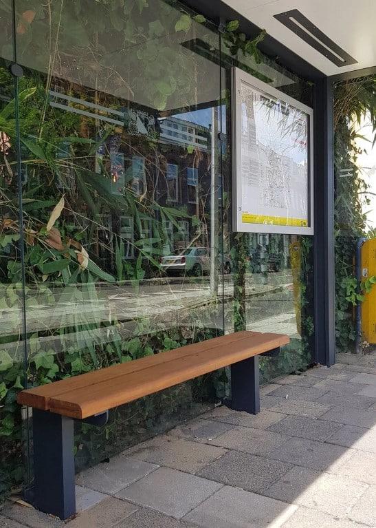 Ciudad holandesa transforma sus paradas de ómnibus en zonas de descanso para abejas