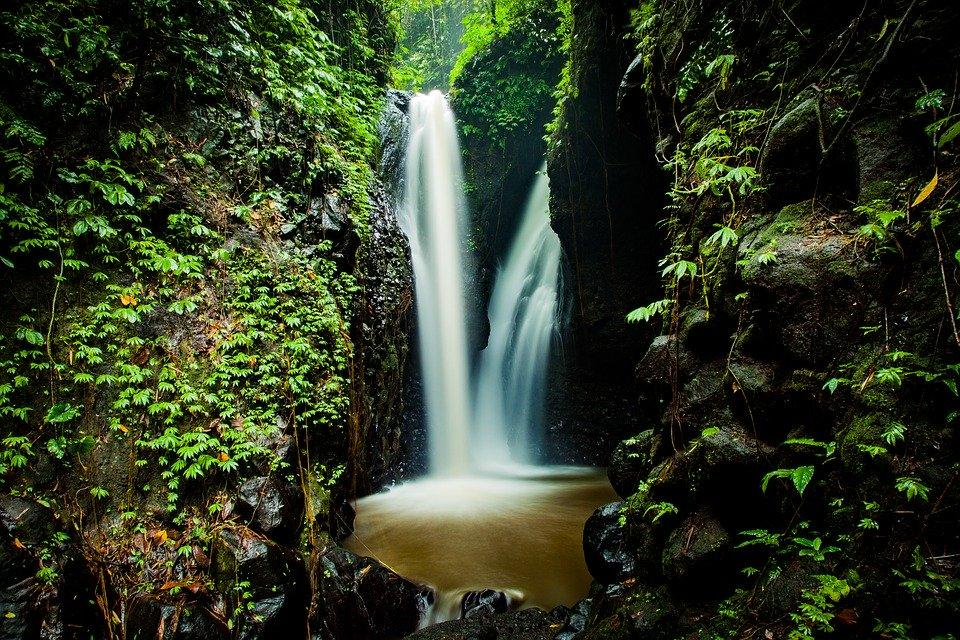 Ecuador se convirtió en el primer país del mundo en codificar los Derechos de la Naturaleza