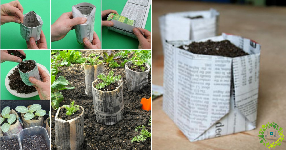 como hacer semilleros de papel de periodico