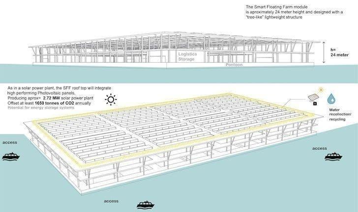 Crean granjas solares flotantes que producen hasta 20 toneladas de verduras al día