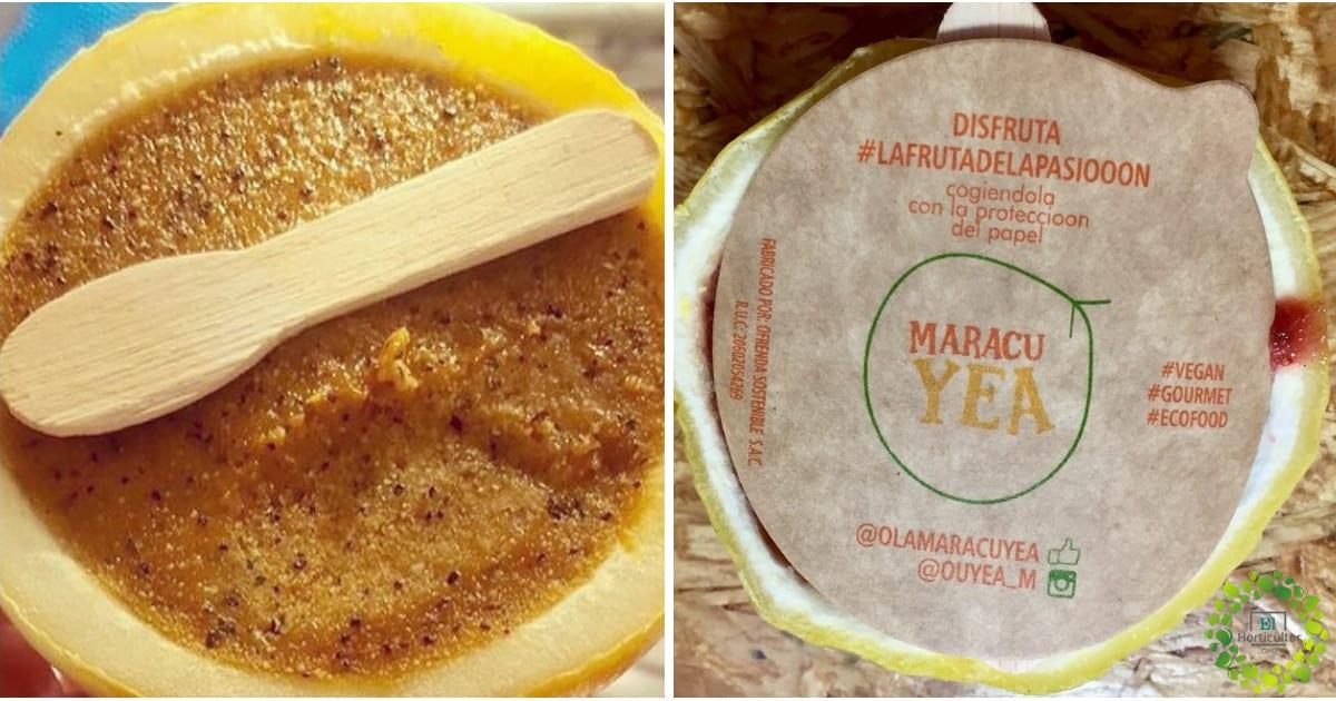 , Maracuyea: el primer helado artesanal empacado en su propia cáscara, disfrutar sin contaminar