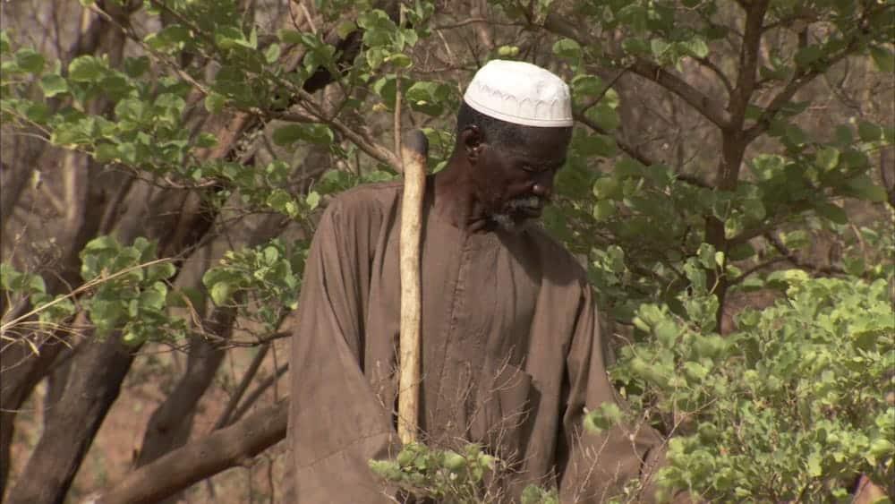 La increíble historia del hombre que detuvo el avance del desierto