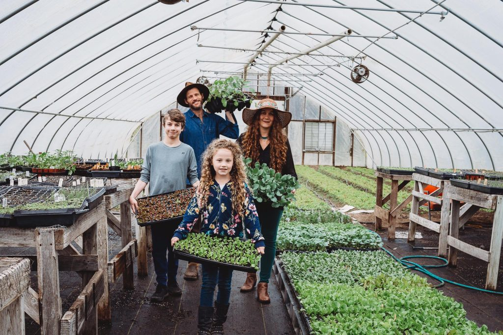 , Curso Online y Gratuito sobre Huerta orgánica Familiar