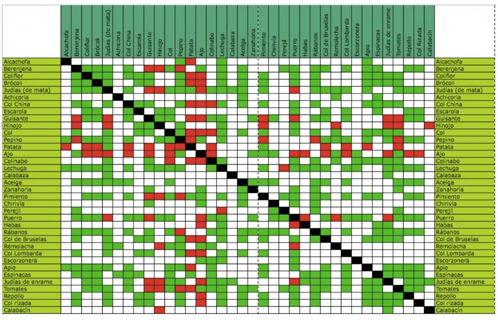 , Cómo asociar cultivos en la huerta, Lista Completa de compatibilidad