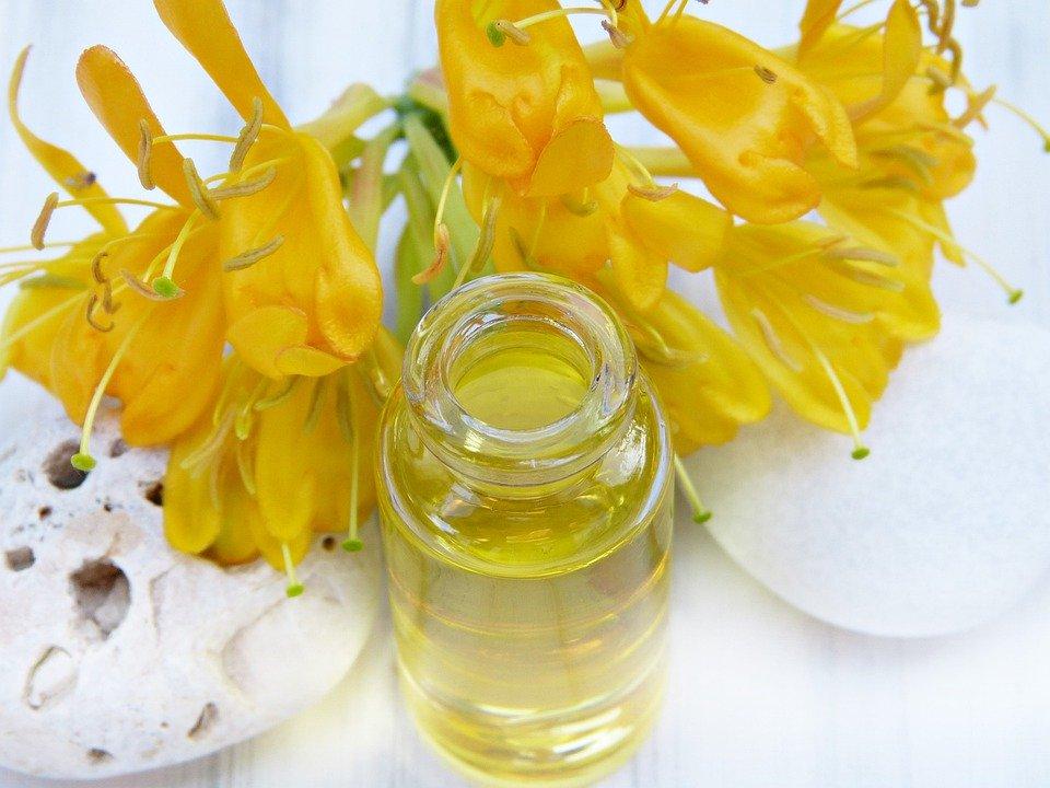 ¿Cómo preparar aceite de jojoba casero?