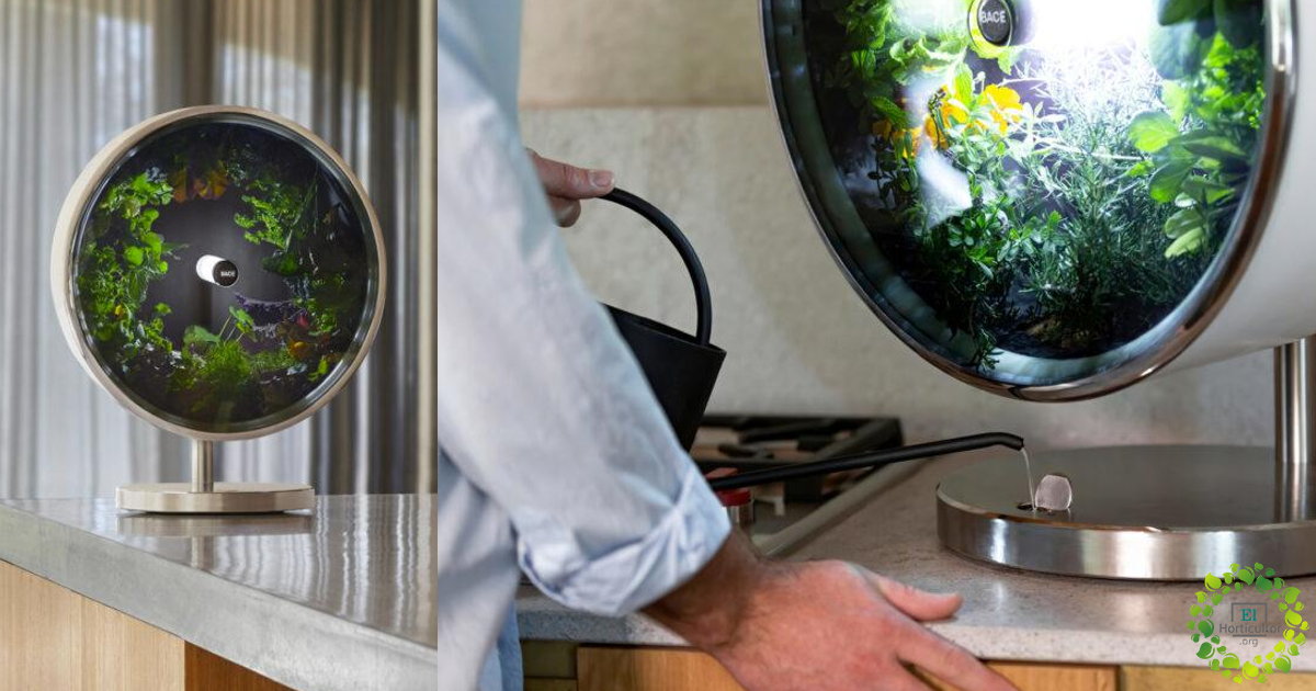 , Rotofarm, dispositivo inspirado por la NASA para Cultivar alimentos sin Tierra ni Luz Natural