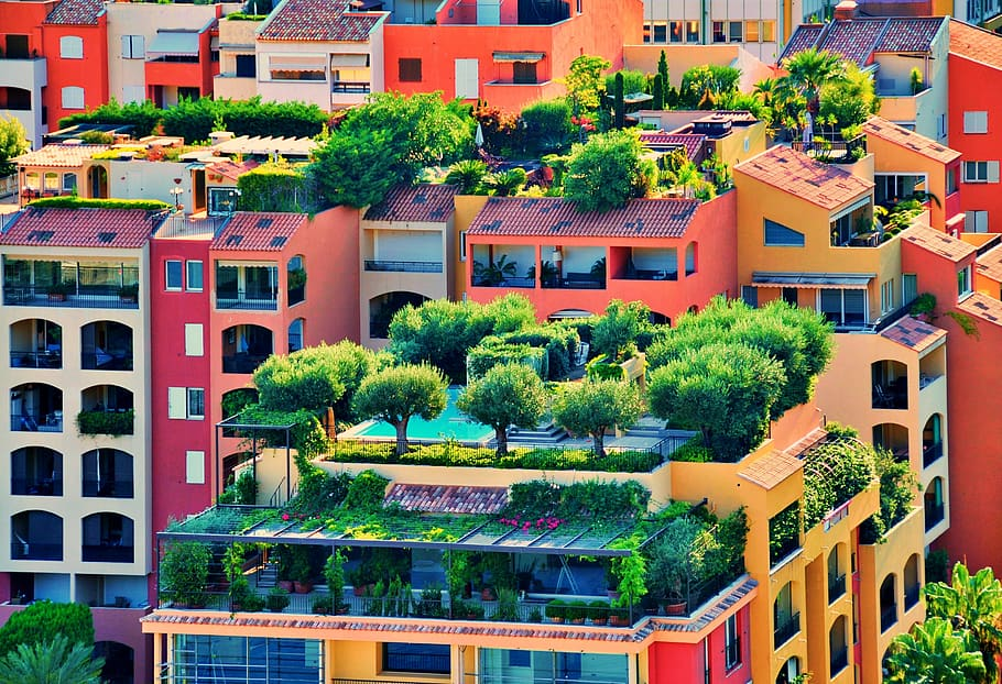 , Cómo convertir tu terraza en un huerto urbano