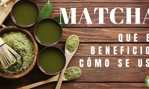 ¿Qué es el té matcha?, beneficios, contraindicaciones y cómo se usa