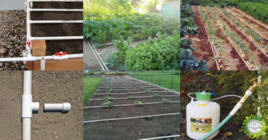 , Cómo construir un sistema de riego por goteo Casero