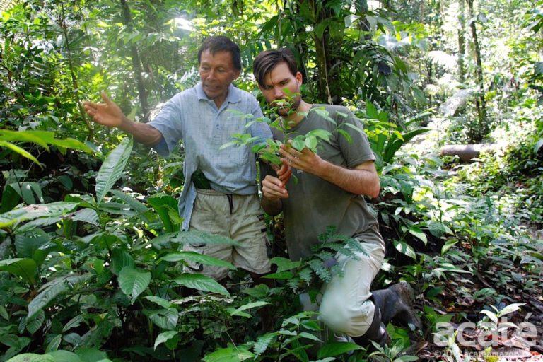 Tribu amazónica crea enciclopedia de medicina natural tradicional de 500 páginas