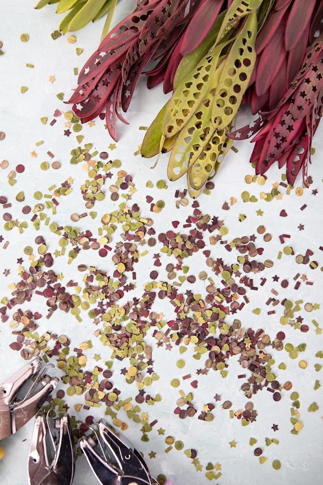 , Confeti Biodegradable, Gratuito y Ecológico