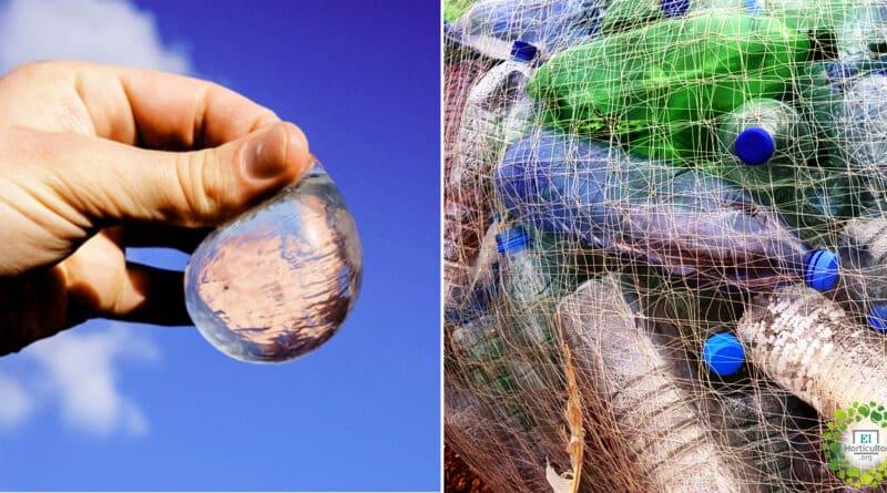 , Cápsulas de agua comestibles y biodegradables reemplazan botellas de plástico
