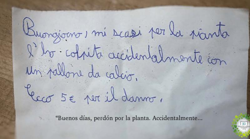 , Un niño daña la planta del vecino, la nota de disculpa es un gran ejemplo de ética y sentido cívico.