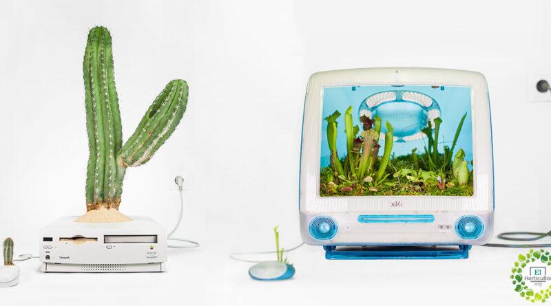 , Computadoras antiguas son convertidas en bellos terrarios
