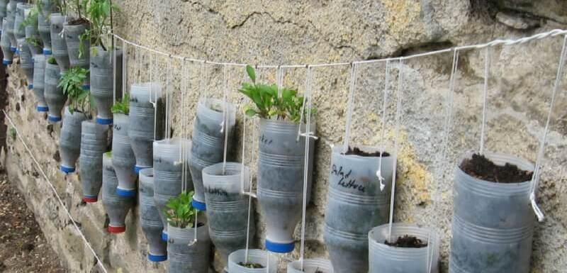 Jardin vertical hecho de botellas recicladas