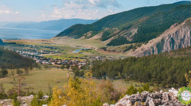 , Rusia regala una hectárea de tierra a cada ciudadano, Ruso o extranjero que desee cultivarla