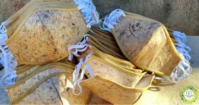 , Fabrican mascarillas 100% biodegradables a partir de fibras naturales