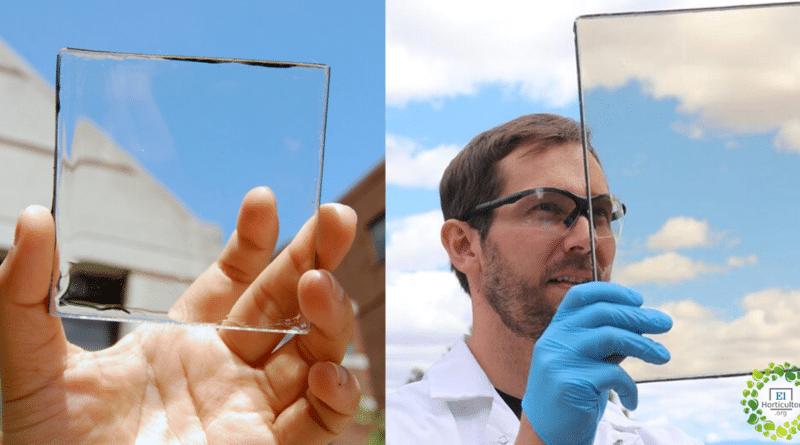 , Estos son paneles solares transparentes que pueden generar electricidad desde ventanas