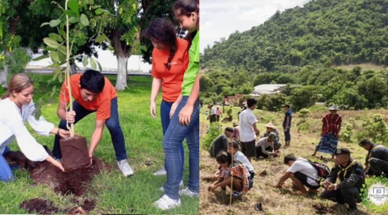 , Egresados: proponen celebrar plantando un árbol en lugar de huevazos y suciedad