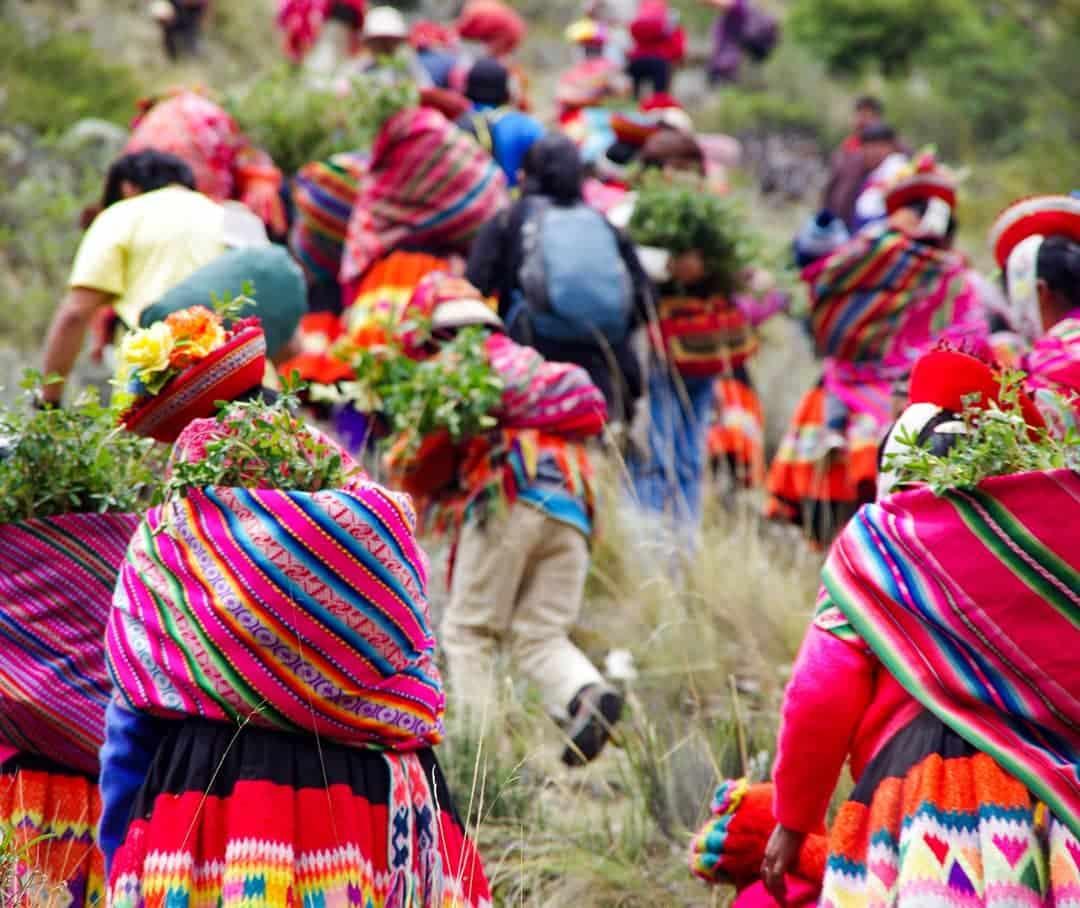 , Pueblos originarios están reforestando los Andes
