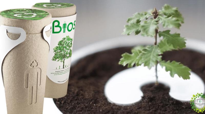 , Gracias a estas Bio-urnas puedes convertirte en un árbol después de morir