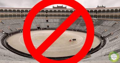, Quintana Roo, otro estado mexicano que prohíbe las corridas de toros
