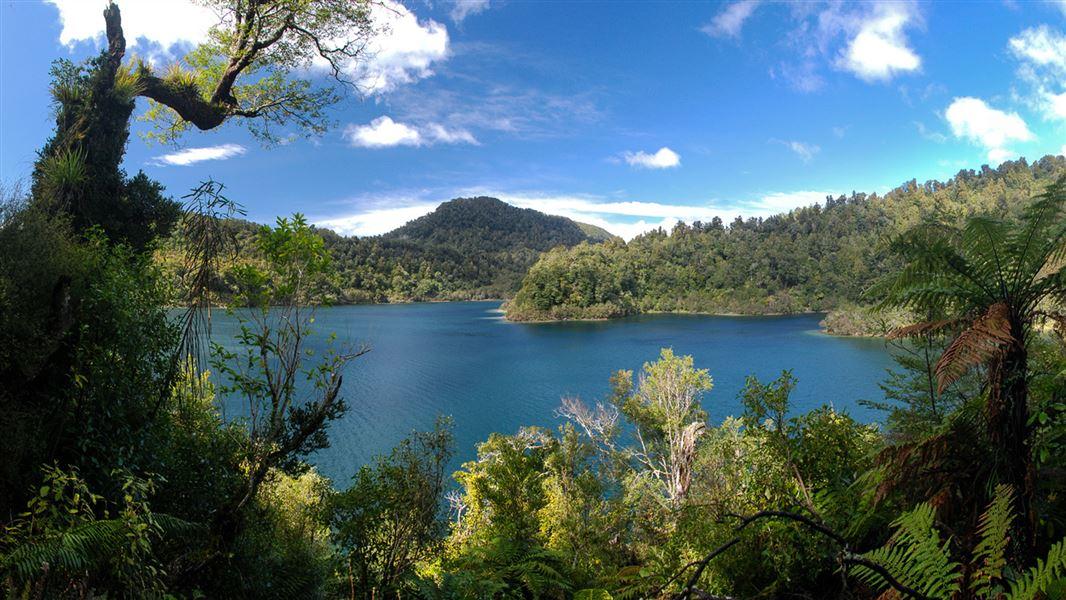 , En Nueva Zelanda la selva tropical tiene los mismos derechos que sus ciudadanos