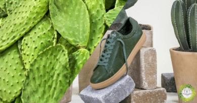 , Lanzan las primeras zapatillas del mundo hechas en cuero de cactus