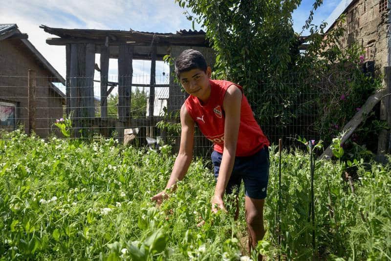 , Joven de 16 años, logró armar su huerta y conseguir alimentos para toda la familia