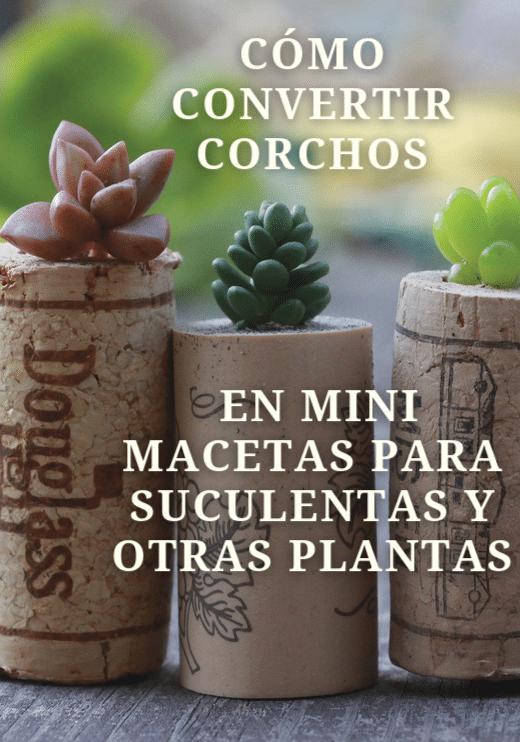 , Cómo convertir corchos en mini macetas para suculentas y otras plantas